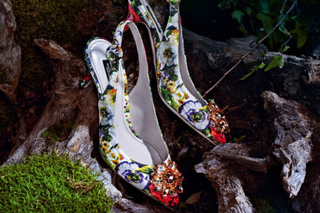 مدل کیف و کفش زنانه D & G 13