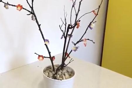 فیلم آموزش گلدان درختی
