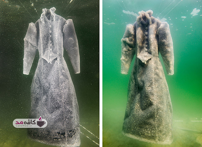 ساخت لباس عروس با نمک های دریایی