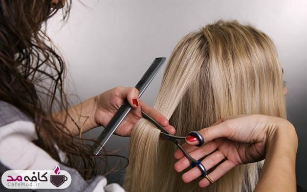 هر چند وقت یک بار باید موها را کوتاه کنید؟