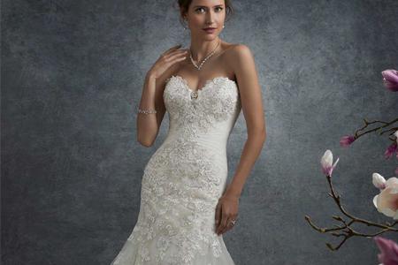 مدل لباس عروس Sophia Tolli 1