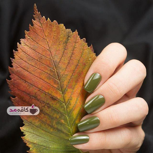 ناخن های پاییز و زمستانه