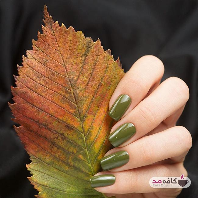 مدل های ناخن با رنگ های پاییزی