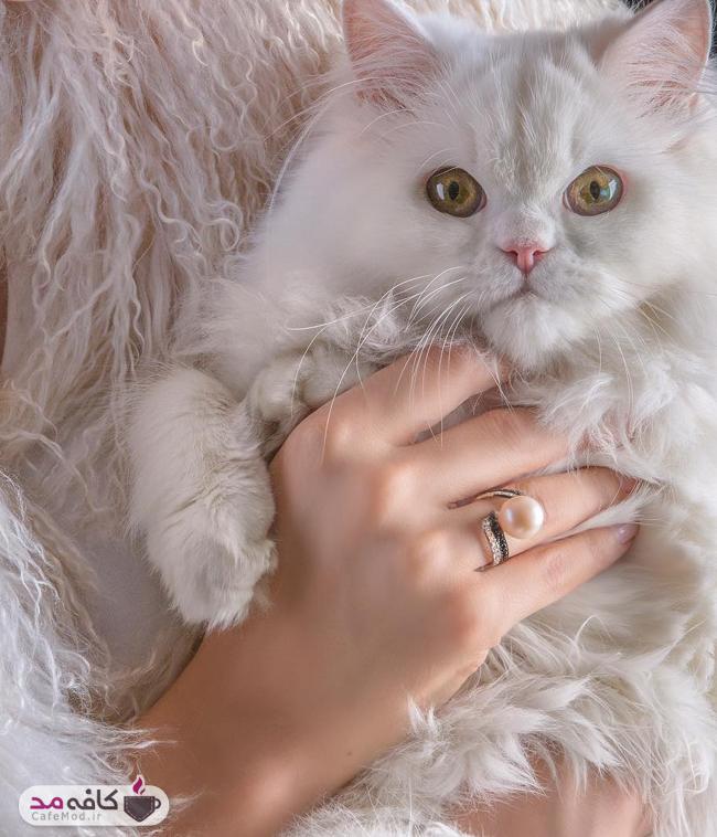مدل جواهرات ایرانی زیوارا Xivara