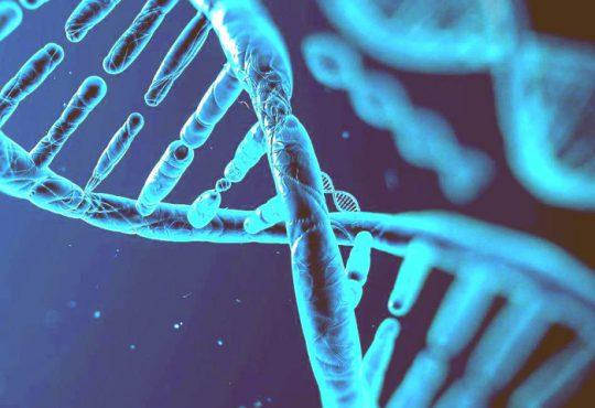کشف ژن های مرتبط با آلزایمر و سندروم داون