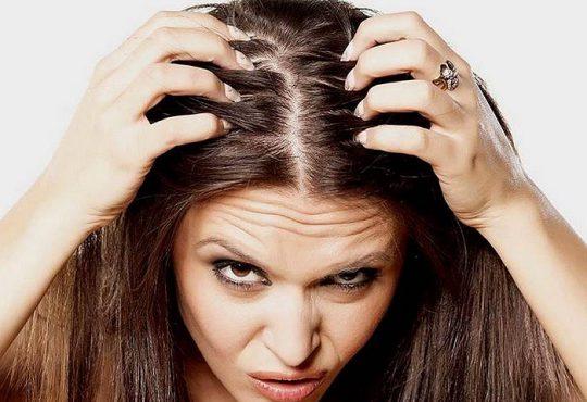 درمان های طبیعی برای از بین بردن چربی مو