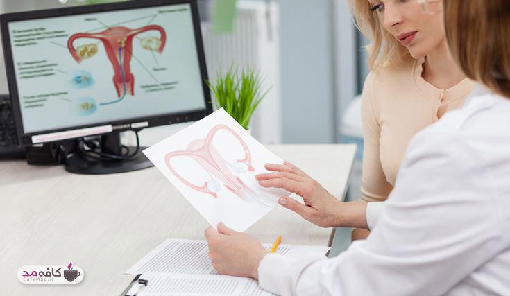 واژنتان را بهتر بشناسید