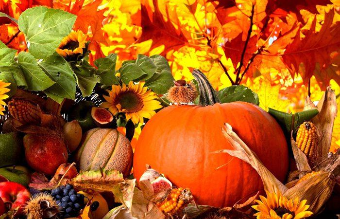 اضافه کردن سوپرفودهای پاییزی به رژیم غذایی
