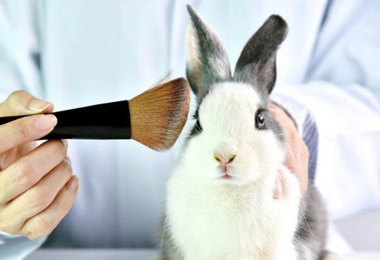 محصولات آرایشی بهداشتی کرولتی فری