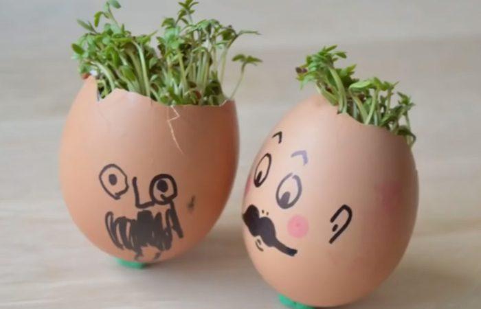 فیلم آموزش تخم مرغ های سبزه دار برای عید